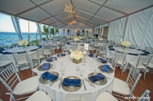 The reception tent sparkled with shades of white...